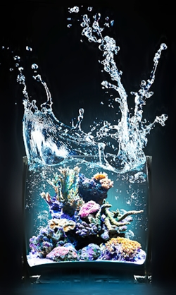 stihiya-wody