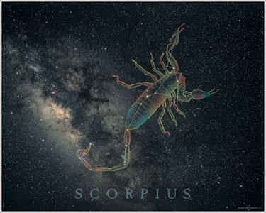 Скорпионы для парней гороскоп